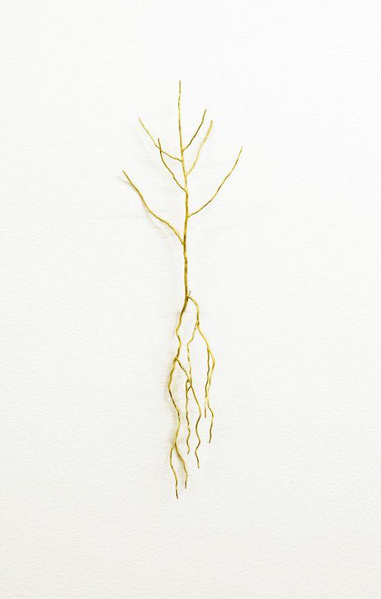 Golden tree - Frode Bolhuis