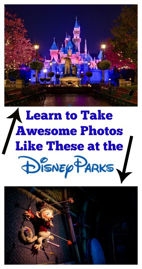 Learn to take better photos with Tom Bricker from the Disney Tourist blog.
