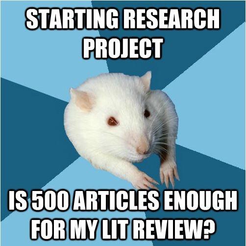 dissertation deadlines