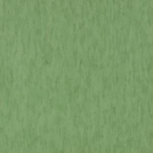 Green Grass - T3527