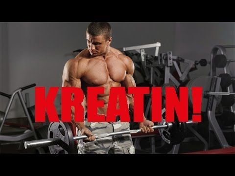 Richtige Einnahme von Kreatin Creatin   Kreatin Creatin für Muskelaufbau...