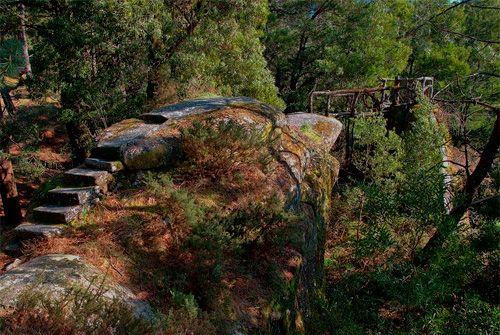 Monte Aloia Nature Park Spain | Parque Natural Monte Aloia en Tui. Pontevedra | Turismo de Galicia