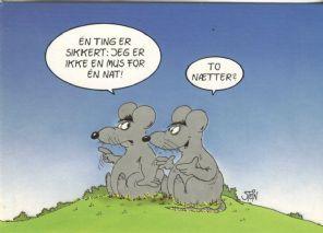Uli Stein & Gert Koch Postcard, En ting er sikkert