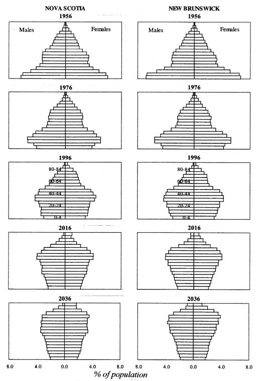 geography population pyramids Students construct population pyramids for canada and bolivia and then   geography in their classrooms, spark student interest in the subject,.