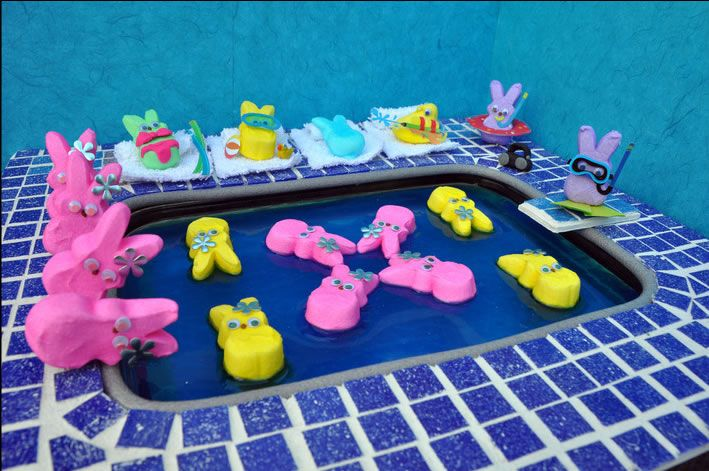 Peeps at the pool - and engaged in synchronized swimming