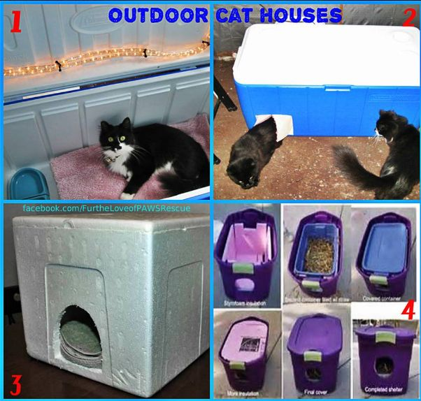 How To Make Cat Houses For Outside Winter
