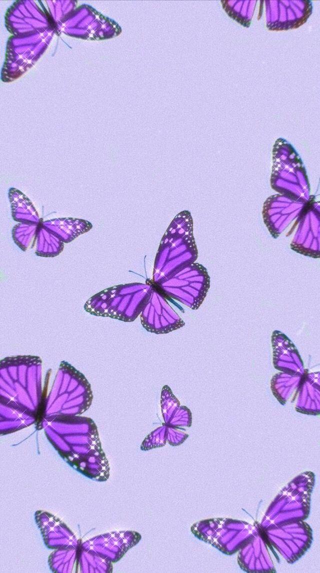 Pin By Jess On Wallpaper Purple Butterfly Wallpaper Iphone Wallpaper Girly Butterfly Wallpaper