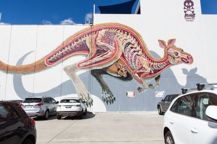 'Anatomy of a Kangaroo' by Nychos on Easey St, Collingwood #streetart #melbourne