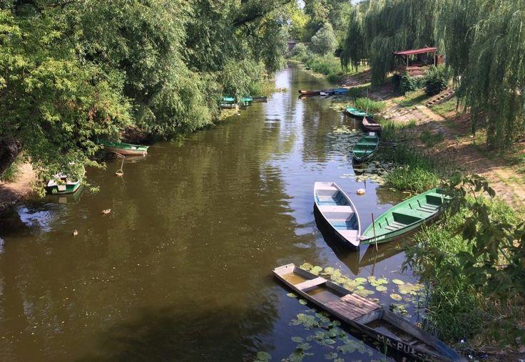 Narew i jej kanały