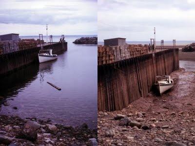 Bay of Fundy tide variance