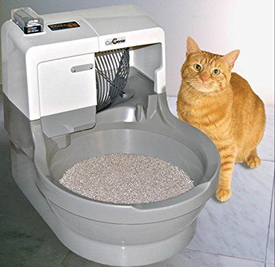 Top 10 Best Cat Litter Boxes