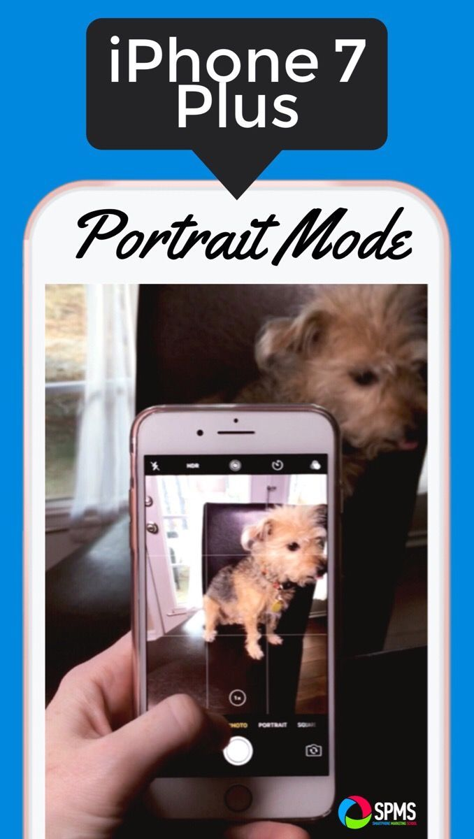 How to use the iPhone 7 Plus Portrait Mode