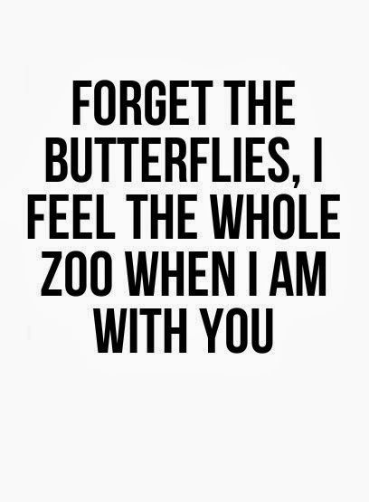 Your My Zoo!                                                  ooh la frou frou