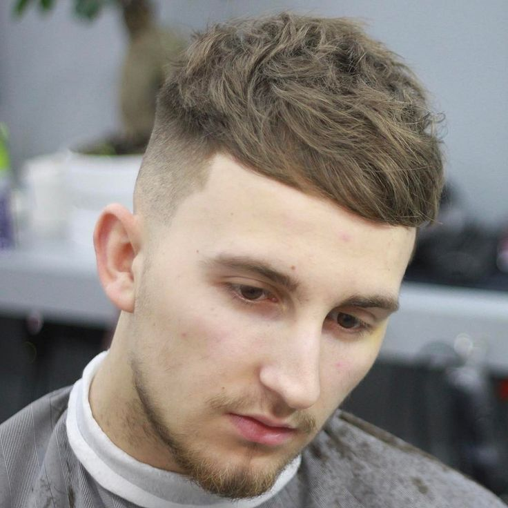 Fade Crop Haircuts For Men Hair Style Men 2017