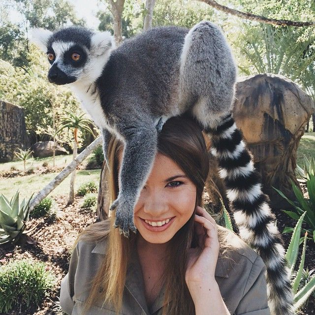 """Bindi Irwin, the daughter of Steve Irwin the """"Crocodile Hunter"""" She is turning 17 next month and plans to work full time at the Australia Zoo."""