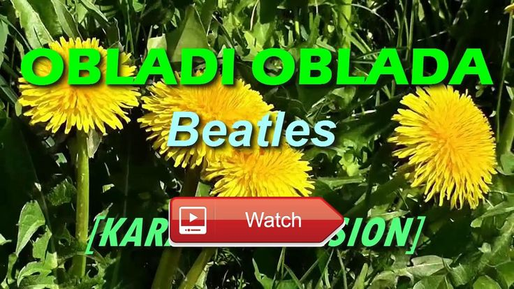 Obladi Oblada by Beatles KARAOKE  Karaoke Version in HD Quality with customized background Please subscribe like and share for more videos
