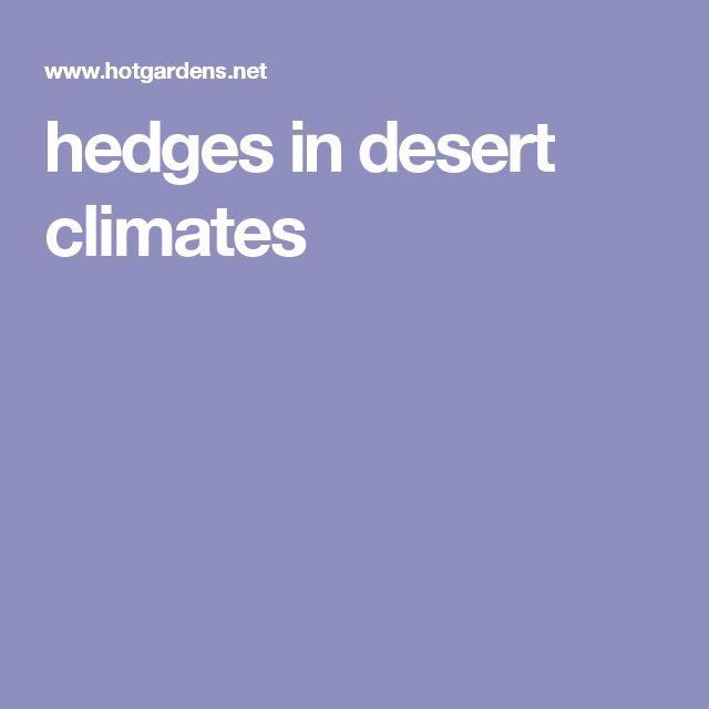 hedges in desert climates