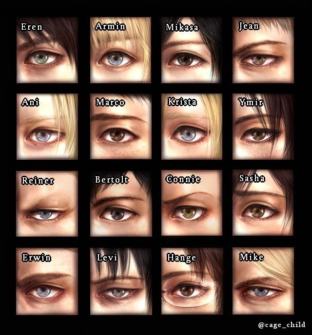 Shingeki no Kyojin (Attack on Titan) ((Here's something serious pinned by me for once... don't get used to it! :D))