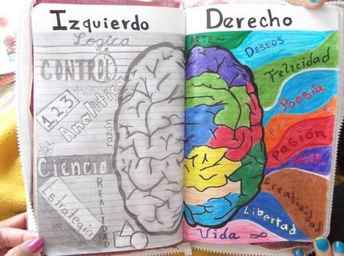 precisa mente, una descripción gráfica de los 2 lados de tu cerebros