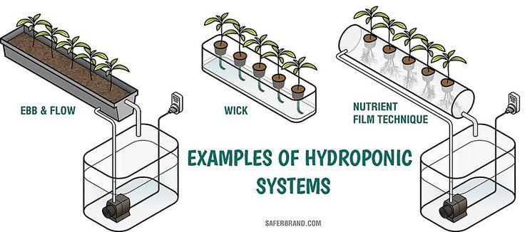 22 best farm technology images on pinterest rain barrels for Hydroponics mesa az