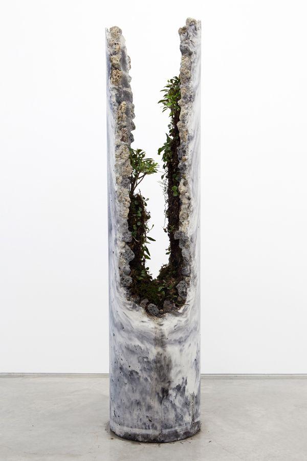Jamie North, fibre reinforced concrete (portland cement, coal ash, steel slag, iron oxide), plant species include; Ficus rubiginosa (Port Jackson Fig) and Pyrrosia rupestris (Rock Felt Fern), Psilotum nudum (Fork Fern)