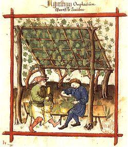 The history of Dijon mustard