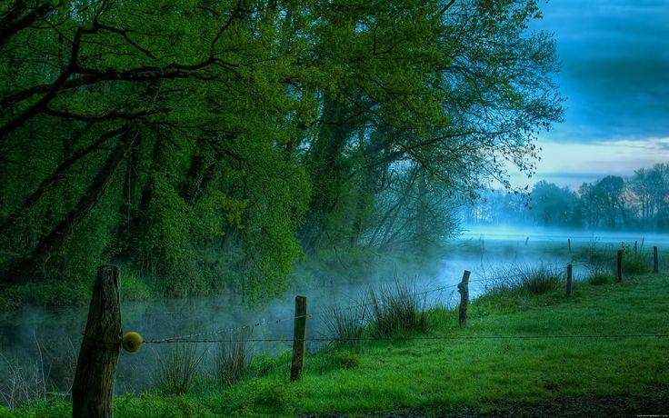 Ekoterapia – obcowanie z naturą i jej zdrowy wpływ na człowieka.