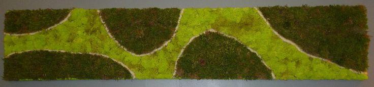 Tableau végétal stabilisé 30 x 90cm  008 de Caly-design-vegetal sur DaWanda.com
