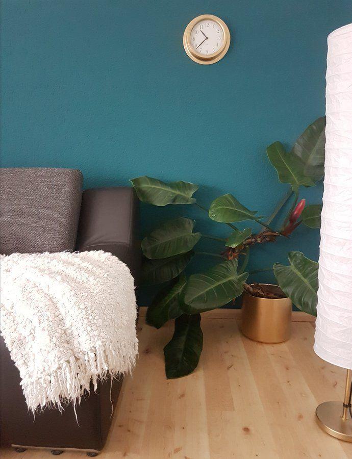 Lieblingsfarbe Petrol In 2018 Lieblingsfarbe Turkis Room Decor