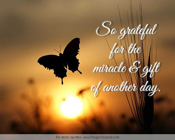 So grateful for the miracle & gift of another day.  #another #day #gift #grateful #happiness #miracle #quotes