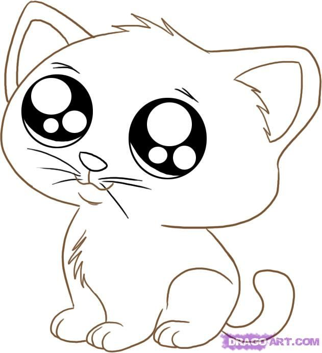 Big Cat Eyes Coloring Pags How To Draw An Anime Cartoon Kitty