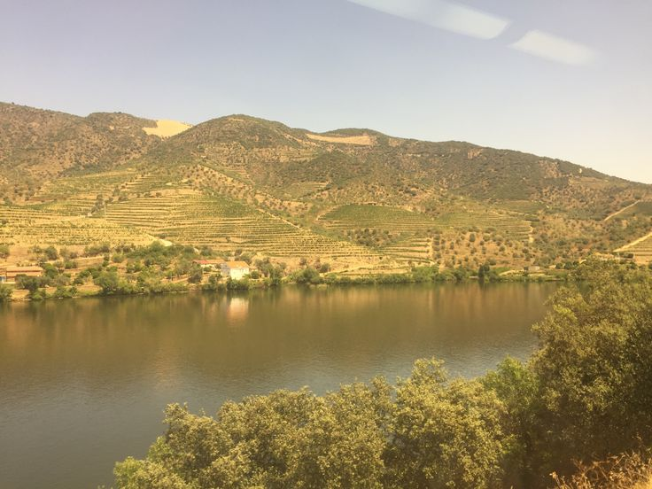 Douro Valley, taking on traintrip from Pinhao to Pocinho