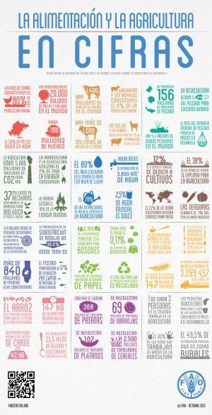 Estadística recopilada por la FAO.