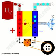 A simple explanation of how fuel-cell cars work by using hydrogen gas and oxygen from the air to make electric power.