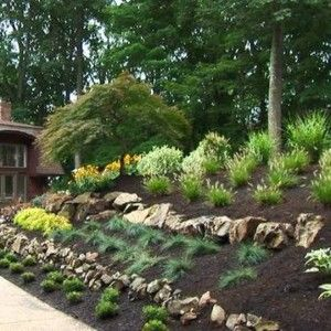 Home Landscape Slope Backyard With Black Mulches And Stones , Sloped Backyard Home Landscape In Landscaping And Outdoor Building Category