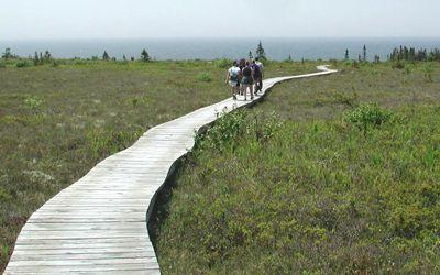 Kejimkujik Seaside Trails - Kejimkujik National Park