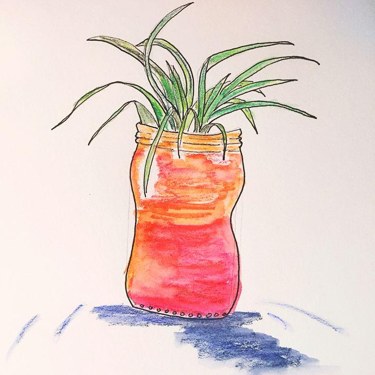 Plant doodles Air plant Watercolour pencil and ink