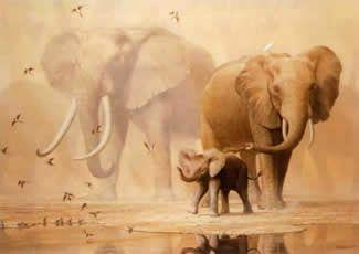 African Elephants And Namaqua Doves by Ian Coleman - Canvas, Wood, Acrylic, Aluminium - ArtToCanvas