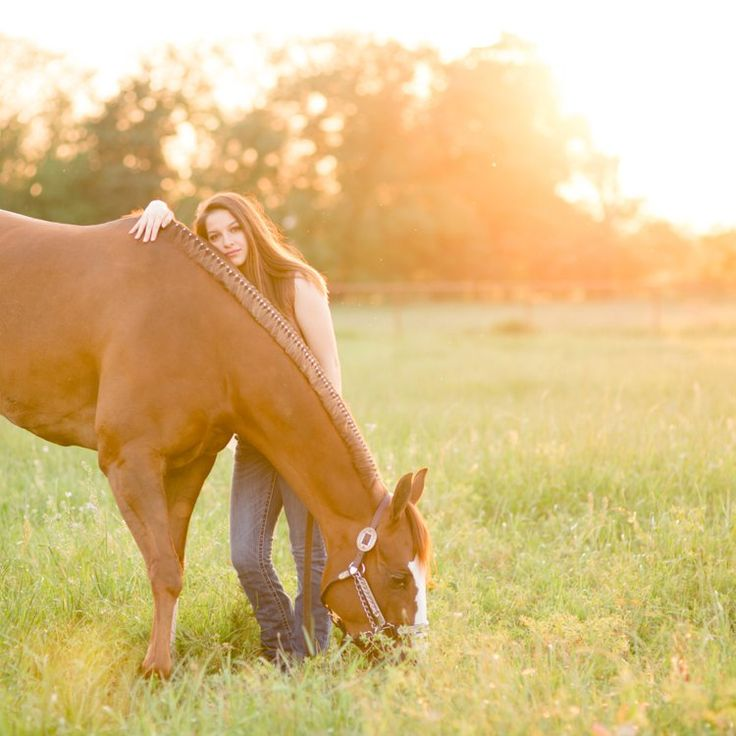 Equine Photography Mentorships by Kirstie Marie Photography. Learn more at www.kmplearn.com  Devin Territo | Andrews Show Horses | Whitesboro, Texas | Fine Art Equine Photography by Kirstie Marie Photography www.kirstiemarie.com