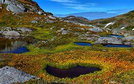 Naturaleza montañas, charca, agua, plantas, rocas Fondos Fotos Imágenes