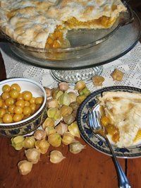 "Ground Cherry Pie photo It's a real plant: Physalis pruinosa, aka the ""ground cherry, husk cherry,"