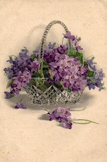 Vintage postcard #violets