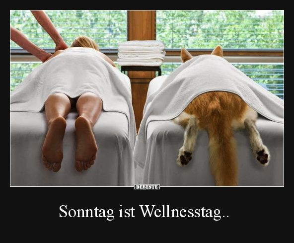 Sonntag ist Wellnesstag..
