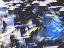 Tissu Viscose / Elasthanne Imprimé Abstraits