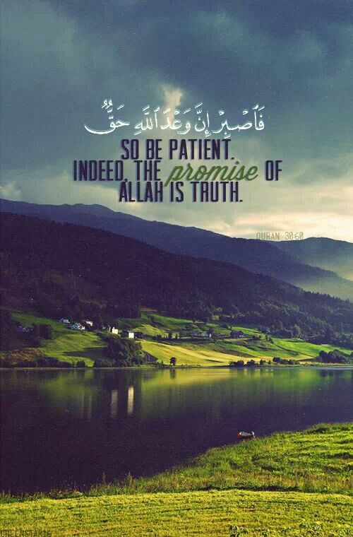 Patience and Allah's promise.