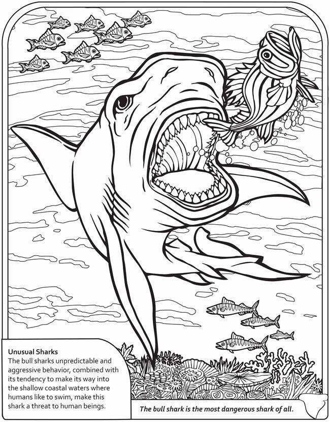 Iguanodon 3 Coloring Page