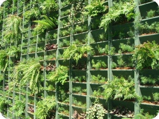 17 Best images about Jardins verticais on Pinterest ...