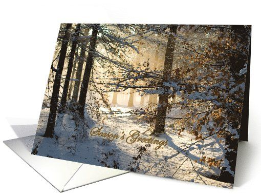 Light filtering through snowy woods - Christmas Season's... by Steppeland