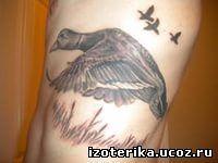 Значение тату: «Утка». - 6 Августа 2014 - ТатуировкиЗначение тату: «Утка». Эзотерика - Карты таро, Сонник, Амулеты, Игральное таро и многое другое...