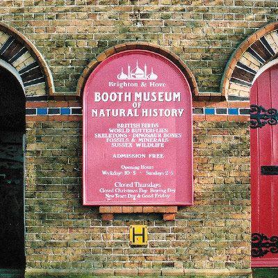 Museu Booth de História Natural localizado em Brighton, East Sussex, Inglaterra, Reino Unido. Pássaros, ossos, esqueletos, borboletas - há uma abundância de animais em exibição nos estandes do museu. Fotografia: http://brightonmuseums.org.uk.